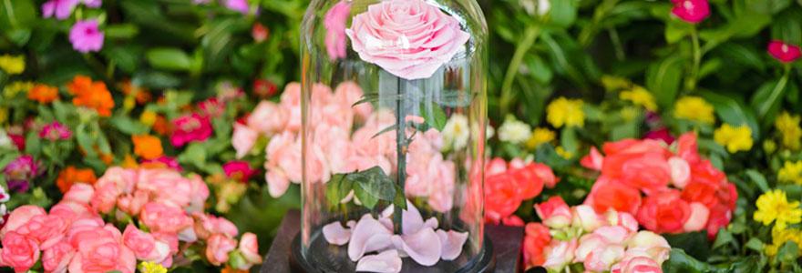 offrir une rose éternelle