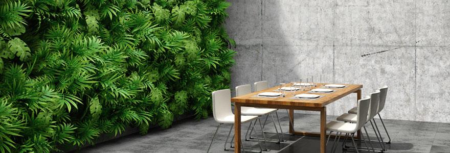 Végétaliser ses murs intérieurs